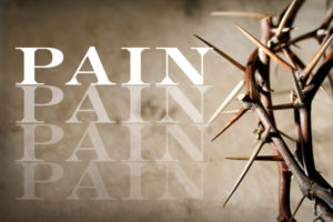 photo  of thorns illustrating Complex Regional Pain syndrome
