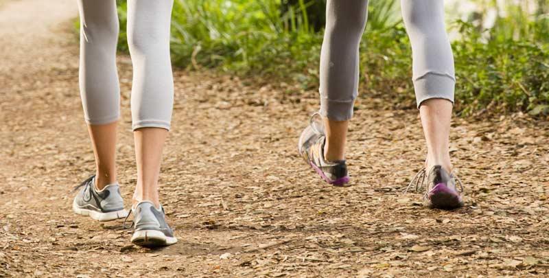 women walking to promote wellness in halifax